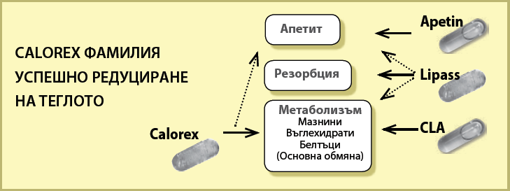 calorex-reducirane